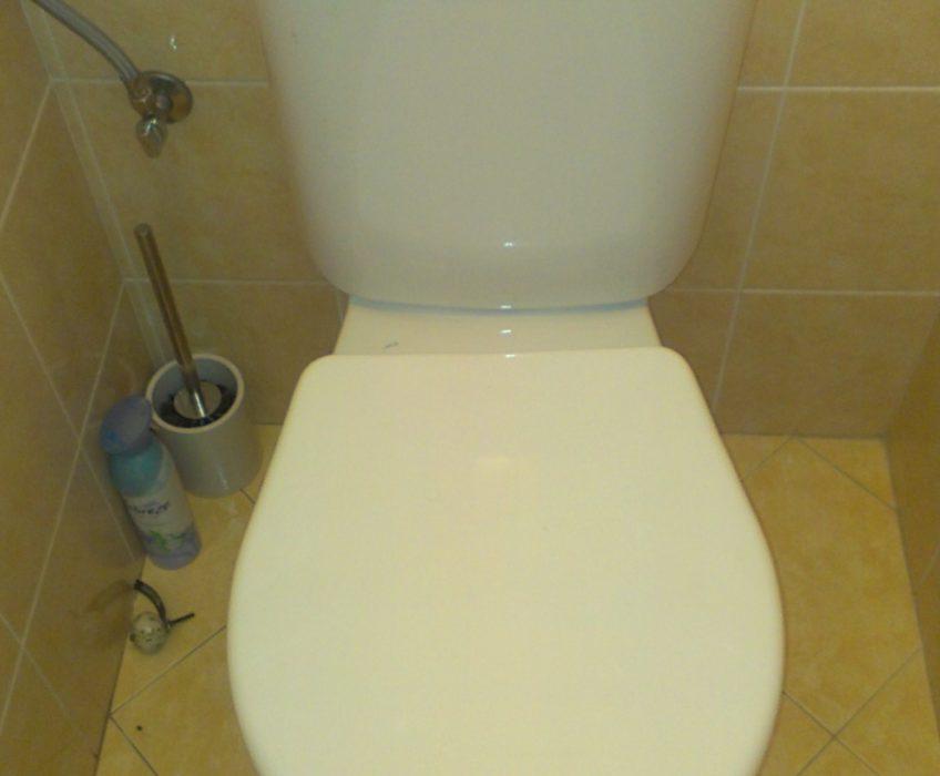 Výměna splachování WC