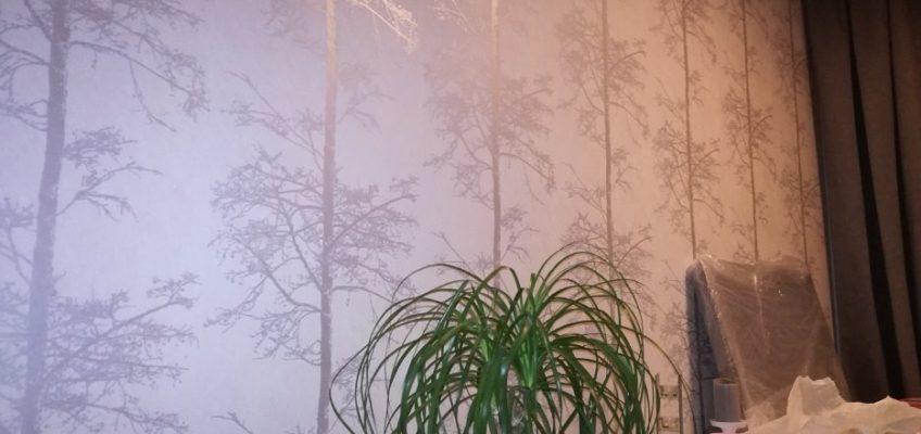 Tapetování fototapety, tapetování vliesové tapety