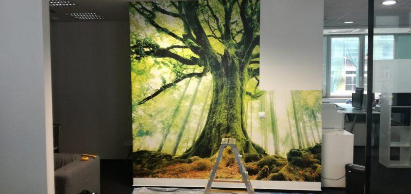 Tapetování fototapeta strom